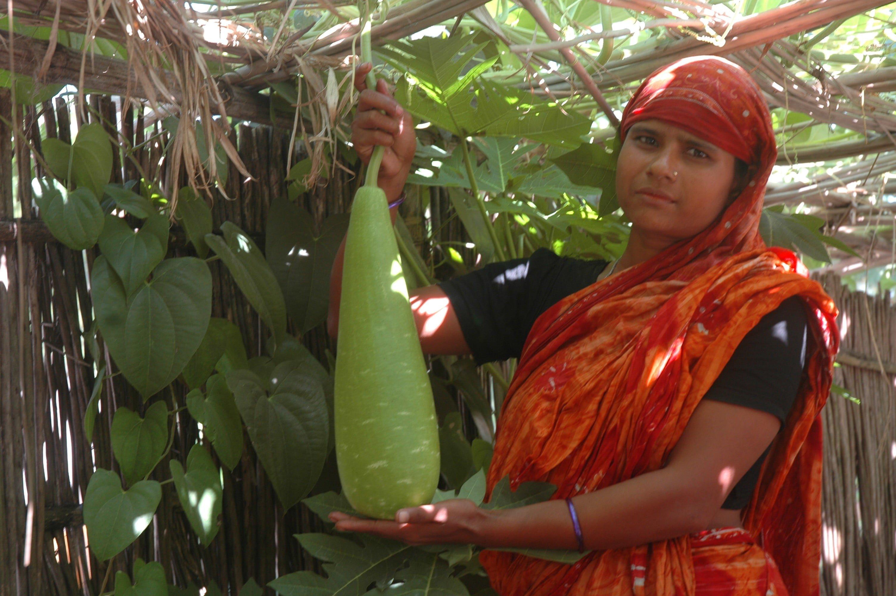 bangladesh_ubiniggarden.jpg