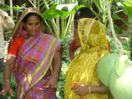 Midwives in Bangladesh at a field demonstration
