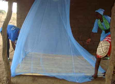 setting up a malaria net in Mozambique