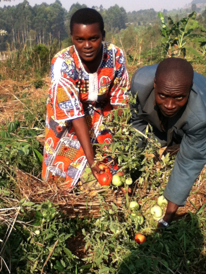 Ngendakumana Adèle and her husband Francois working in their field. Photo: Francois Ndibwami