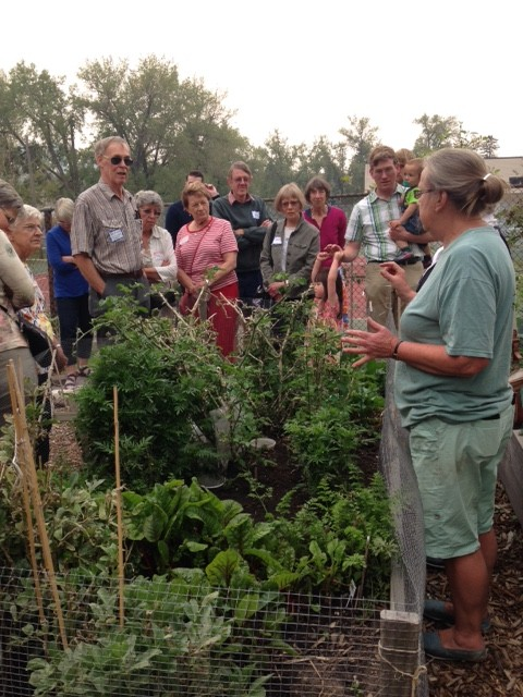 """Workshop participants learn about the community garden at St. Barnabas Anglican Church"""