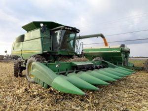 The 2015 harvest.  Photo: Lisa Probst