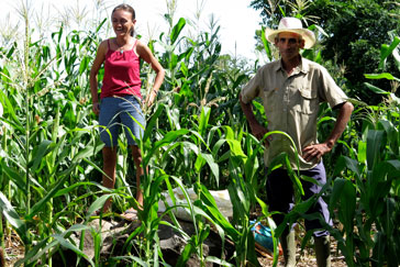 Elizabeth and José in their cornfield. Photo: Gillian Hoyer