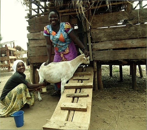Zainabu Kilaza and her daughter Mwajuma with one of their goats in Stesheni village of Nachingwea district. Submitted photo
