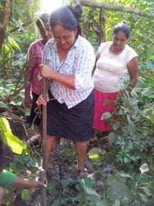 Guatemale 3